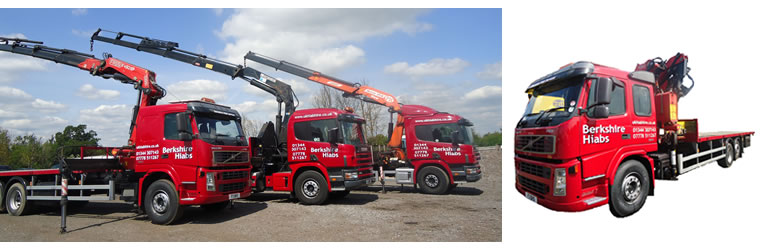 Hiab Hire Gallery - Dinosaur Movement